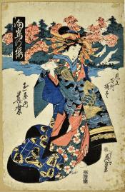 Cherry Blossom at Mukojima