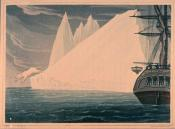 A bear plunging into the sea. Ross's Voyage to the Arctic