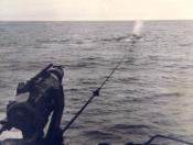 Photograph of whale chase
