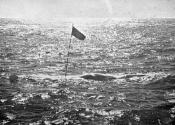 Photograph of a whale marked by a flag in the sea