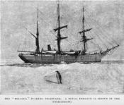 Drawing clipped from a magazine: 'The 'Belgica' pushing Polewards.'
