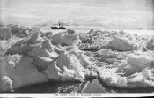Photograph clipped from a magazine: 'The Terra Nova in McMurdo Sound.'
