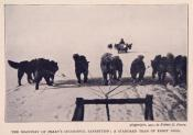 Photograph clipped from a magazine; dog team and dog sleigh