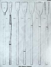 Drawing of flensing spades