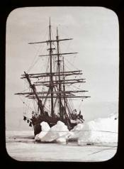 Whaling ship in heavy ice off Cape Hooper