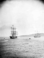 Whaling ships in the River Tay