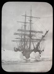 Whaling ship in pack ice