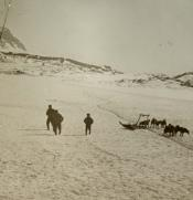 Group of Inuit with a dog sled