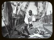 Whaling crewman cutting tusks from a walrus skull
