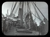 Section of blubber being lowered to deck of Dundee whaling ship