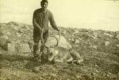 Seaman with carcass of caribou
