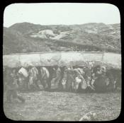 A party of Inuit carrying an umiack