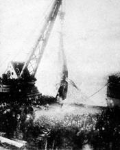 Tay Whale being lifted ashore