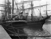 Whaling ships 'Balaena' and 'Windward' in harbour, Dundee.