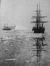 Two whaling ships searching for seals in an icy sea
